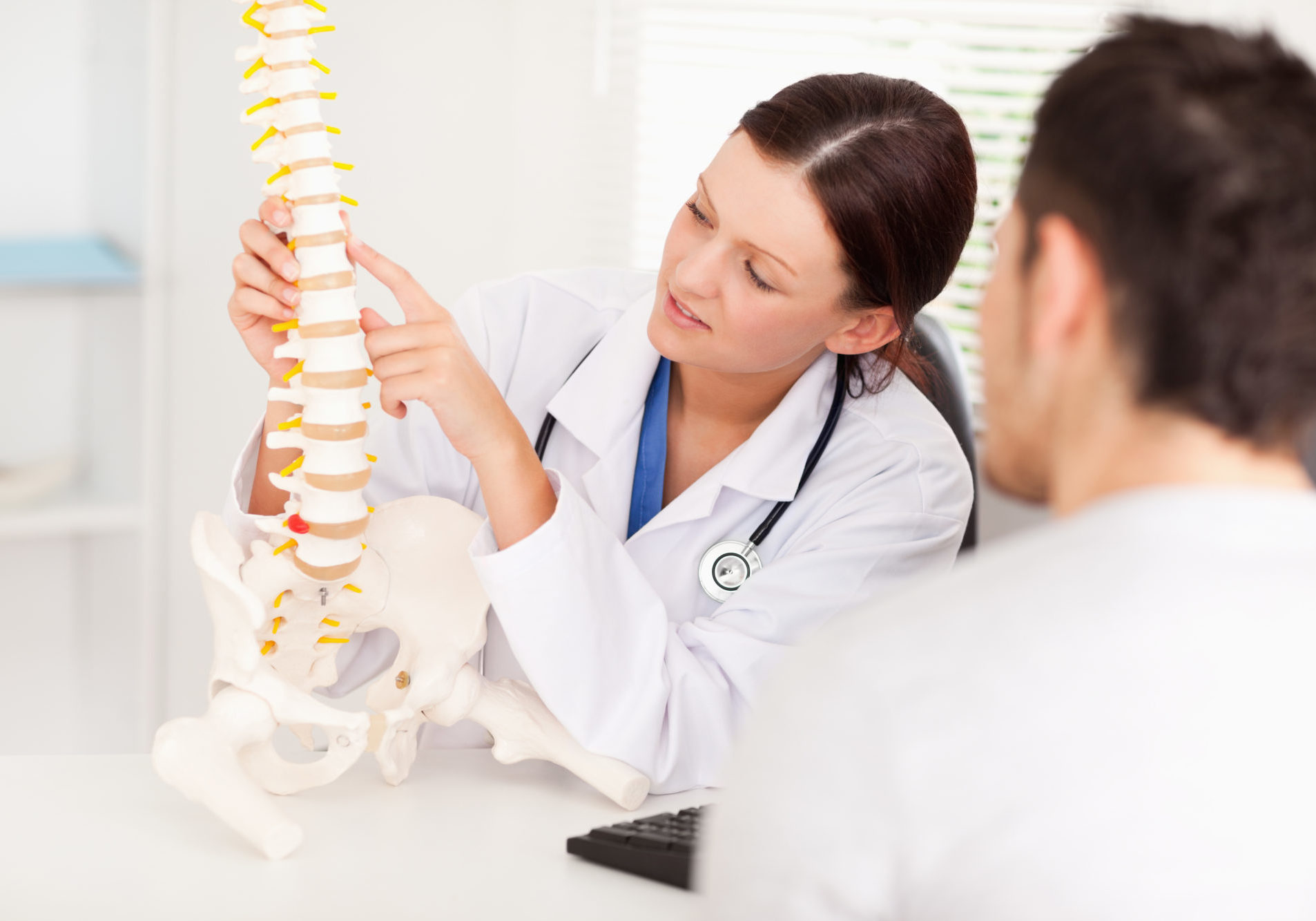 A female doctor is pointing on a bone in the spine